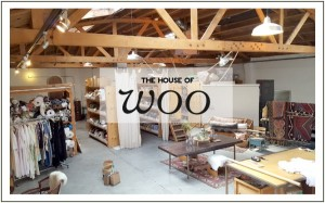 I Love Woo-The House of Woo