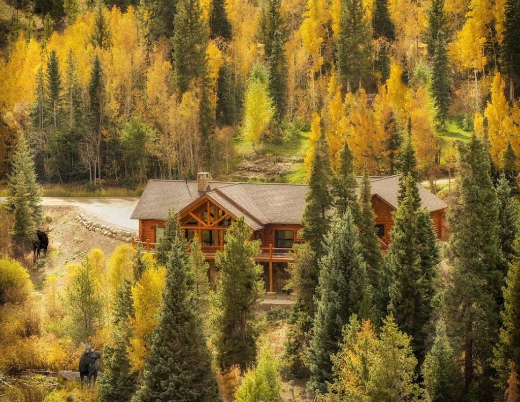 The Soul Within Log Cabins